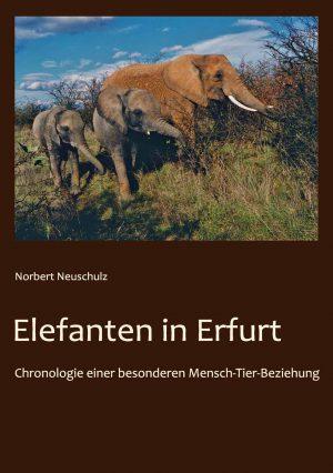 Elephant Erfurt Zoo